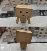 suicidal danbo by macpic
