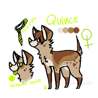 Quince REF [NOT MINE] by LoserDoge