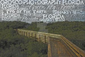 Hd Green Key - End of the Earth - Orosco Photograp by AdamF-X29