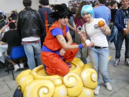 Son Goku and Bulma Brief by PinkLemon91