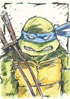 TMNT Leo Sketch Card by Graymalkin2112