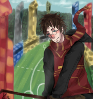 HP: Quidditch by Kipsiih