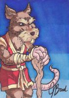 Sketch Card #21 - Master Splinter by JasonRocket