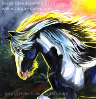 Blue Approach - for sale by rieke-b