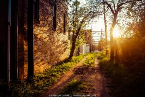 Sunlit Alley by AndrewCarrell1969