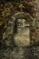 Gate To The Dead by Ray4359