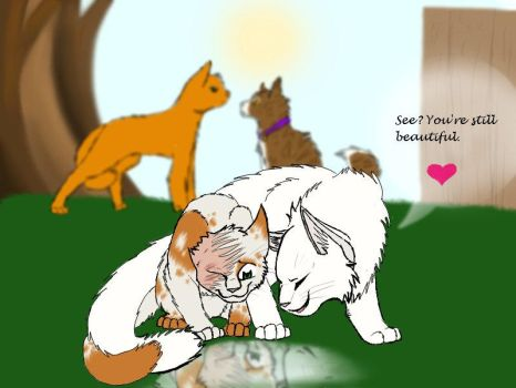 Cloudtail and Brightheart new by timekept