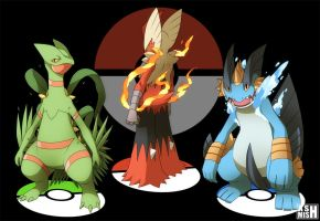 Hoenn Mega Starters by ashmish