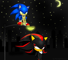 Into the Night by Shadowhedge1001