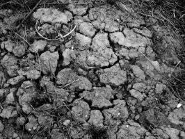 Cracked Mud by StolenSecrets