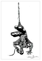 Spiderman by Calmione