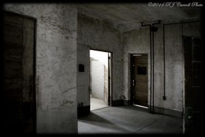 Ellis Island Hospital XIII by rjcarroll