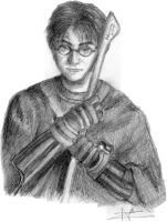 Harry Potter by Aliquis01L