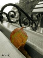 my bench mate by ad-shor