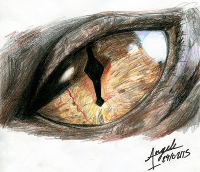 Smaug's Eye by OneAngele