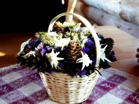 Nice bouquet by lailalta