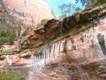 Drought Trickle Zion National Park Waterfall by Trisaw1