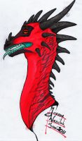 Head with promarkers by nigara-and-nira