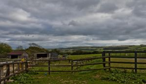 A View from the Animal Sanctuary by Xs9nake