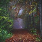 Mistery  October by Justine1985