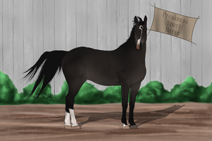 PSH Import 032 by RvS-RiverineStables