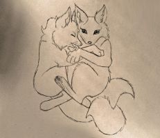 Request: Foxes Snuggling by JesusSavedMe777