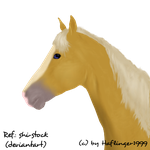 Horse portrait by Haflinger1999