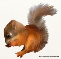 Squirrel. by VeIra-girl