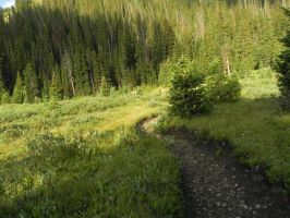 valley trail by BenWillHill