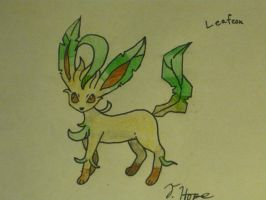 Leafeon by Cody2897