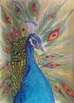 Pavo Real by NuriArt95
