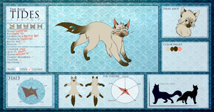 TBT feathertail Updated relationships by Kimchiitazztic