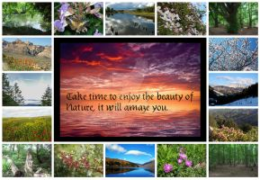 Beauty of Nature Collage by Seraena