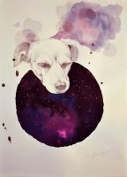 cosmic doggy by margaw