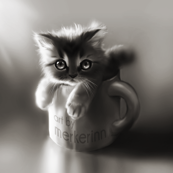 Cat in the Cup by merkerinn