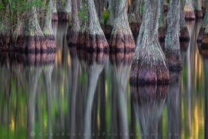 Semblance by ChadRouthier