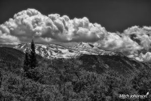 Spring Snow and Aspens BW by mjohanson