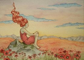 Poppy field by erinclaireb