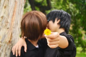 useing the Chrysanthemum to hide the kiss by Lilia92x