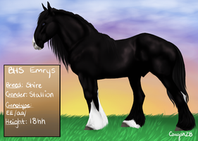 BHS Emrys (revamped ref) by Cougar28
