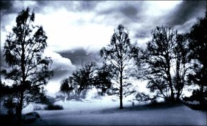 Wery Dusty January 3st Afternoon In Archipelago by eskile