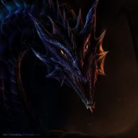 Dragon head front view by ShadowDragon22