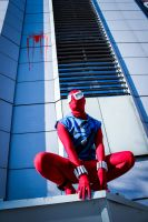 Scarlet Spider by DorianG26