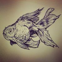 Goldfish by stay-weird