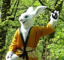 My hare Fursuit by Tioh