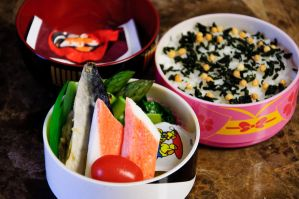 Mackeral Bento by Demi-Plum