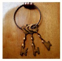 Bronze Keys 4 by Polly-Stock