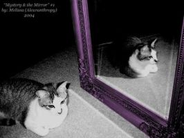 Mystery and the Mirror 1 by Aleuranthropy