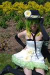 Camellia Gumi by Kream-Cheese
