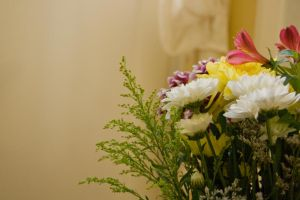 Stock Flowers 3 by Sheiabah-Stock